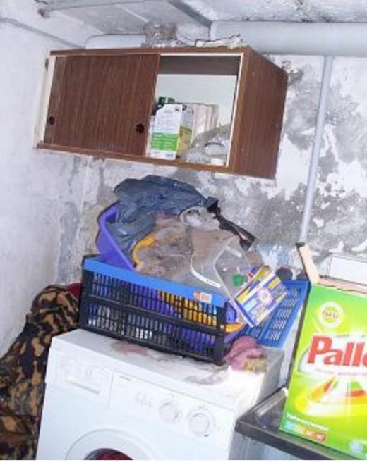 handel mit auslandshunden angek ndigte kontrollen des amtstierarztes abgelaufene arzneimittel. Black Bedroom Furniture Sets. Home Design Ideas